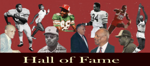 HOF-collage-bg
